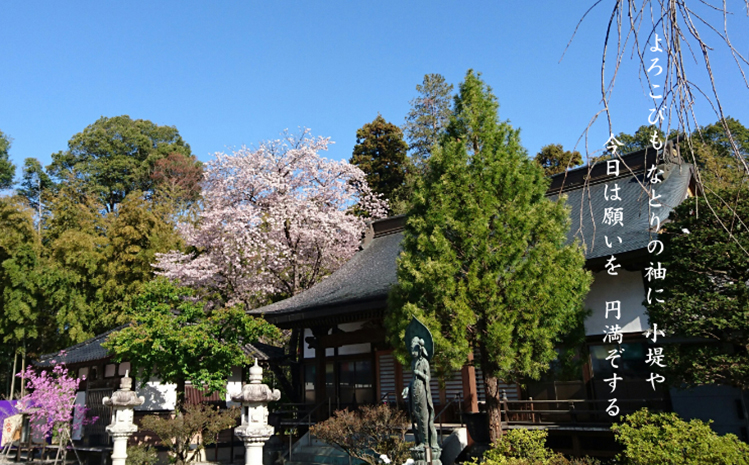 円満寺は809年に開創された古刹であり、葛飾坂東観音霊場の第33番札所です。広大な境内は、桜や銀杏など四季折々の自然に囲まれています。本堂と客殿は地域屈指の大きさで、大人数のご法要も可能です。